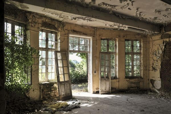 Garden View. A Look Into The Gardens Of A Disused Hospital In Wallonia Belgium